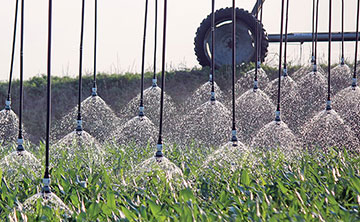 LEPA Close Spacing irrigation