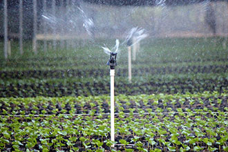 Drip Vs Overhead Irrigation Senninger Irrigation