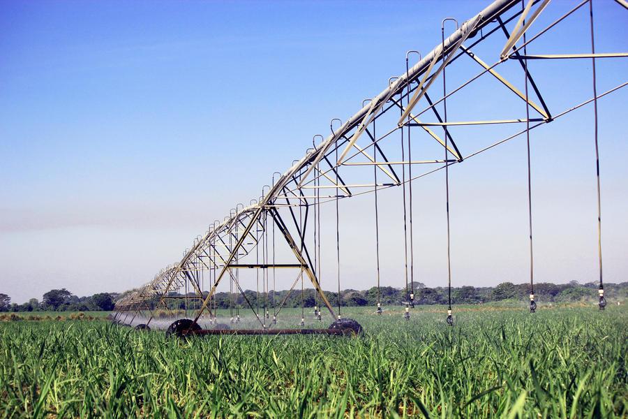 i-wob-irrigation-sugar-cane-guatemala.jpg