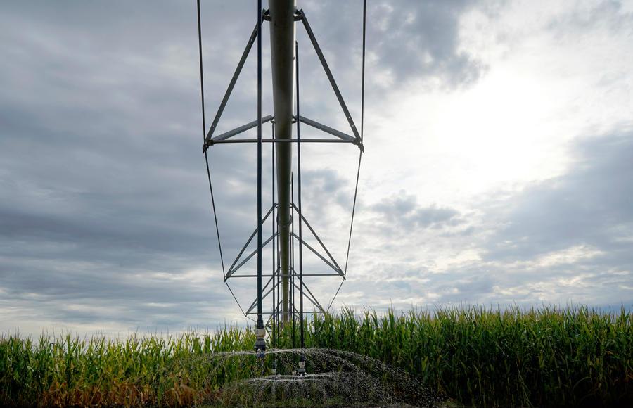 ldn-shroud-spray-corn-cotton-texas.jpg