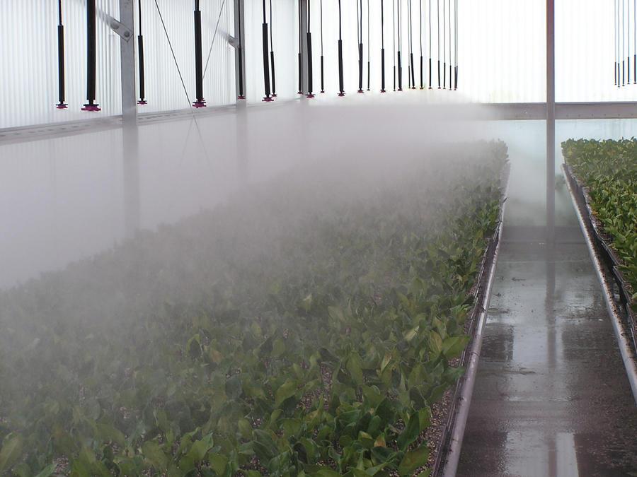 mister-inverted-irrigation.jpg
