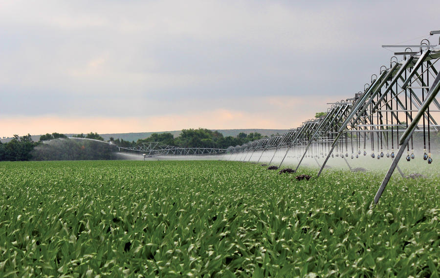 xi-wob-irrigation-corn.jpg
