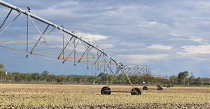otech pivot with i-wob2 over corn in Harrisville, Australia