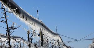 Xcel-Wobbler – Frost Protection – apple orchards – Austria