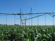 Boom Systems - Corn