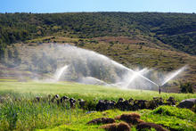 70 Series Impact Sprinklers - 7025 in Pasture