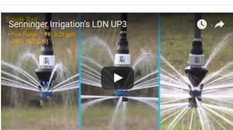 LDN UP3: Comparativo de modelos
