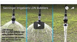 LDN Bubbler: Comparativo de modelos