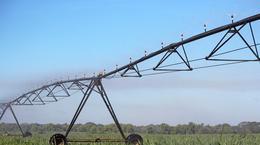 Xcel-Wobbler TOP: Sugarcane Irrigation