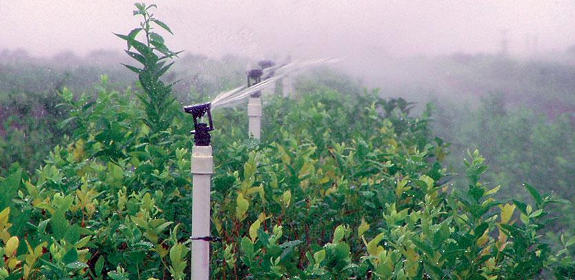 Wobbler 174 Senninger Irrigation